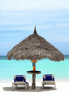 Thatched Hut on a Stretch of Beach in Aruba | Get Away From It All | Deals Up to 60% Off!