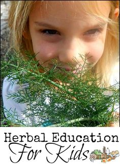 Herbal Education for Kids l Recommended resources and tips l Homestead Lady (.com)