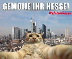 Die 57 Besten Bilder Von Einfach Hessisch Hessisch Stolz