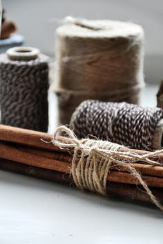 A bundle of cinnamon sticks wrapped in twine.