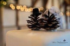 Bryony spent hours finding pine cones for their winter wedding - I just LOVE the little pine cone bride & groom cake topper she made! www.torideslauriers.com