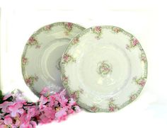 Hey, I found this really awesome Etsy listing at https://www.etsy.com/listing/176739871/two-theodore-haviland-limoges-luncheon