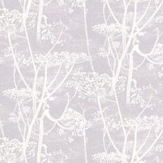 Cow Parsley print wallpaper by Cole and Son. Wallpaper design with white cow parsley print on light blue. Feature Wallpaper, Grey Wallpaper, Print Wallpaper, Pattern Wallpaper, Original Wallpaper, Cole Son, Lilac Background, Cow Parsley, Cole And Son Wallpaper