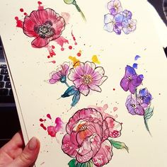 Some flowers to add to @Mollyimogensmyth tattoo  #uktta #watercolour #watercolourtattoo #flowertattoo #floral #flowers #painting #illustration #botanicalillustration #poppy #poppytattoo #peony #hydrangea #ladytattooers #instacute #vintagetattoo #watercolourpainting