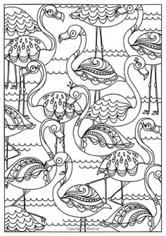 creative coloring birds art activity pages to relax and enjoy | Free printable adult coloring page of pink Flamingo bird ...