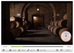 Video of Santa Carolina Vineyard - Maipo Valley, Chile Chilean Wine, Wine Enthusiast Magazine, Wine Tourism, Vineyard, February, Santa, Glass, Wine, Vine Yard