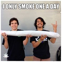 Only one ;) Hehehe #MMJ #CannabisCures ~PinDiv@~