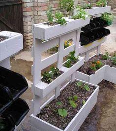 Une bonne façon de renouveler ses jardinières