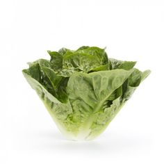 Requena Romaine Lettuce A small dark green midi cos with leaves and shape Suitable for all spring,summer and autumn. Lettuce Seeds, Cos, Cabbage, Spring Summer, Leaves, Autumn, Shape, Vegetables, Dark