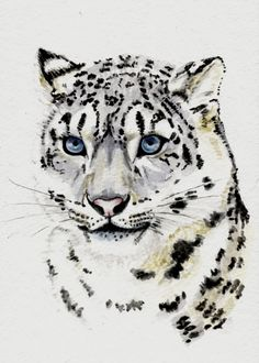 "Watercolor painting, ""Snow Leopard,""  by Earthspalette, via Etsy. Part of my ""Silver Skies"" Treasury: http://www.etsy.com/treasury/Njc0NDA2NXwyNzIzMzc1OTQ2/silver-skies"