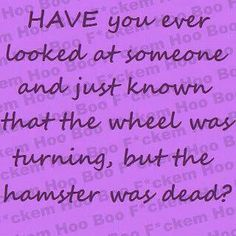 Have you ever looked at someone and just known that the wheel was turning, but the hamster was dead?  LOL!!