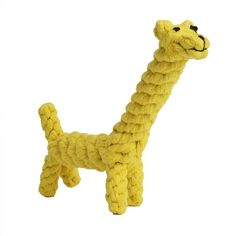 EXPAWLORER Cotton Dental Teaser Puppy cat Chew Rope Toys for Small Dog Biting ** Insider's special review you can't miss. Read more  : Cat toys