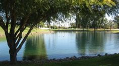 Vacation rental in Phoenix from VacationRentals.com! #vacation #rental #travel Phoenix, Places To Visit, Vacation, Beach, Water, Travel, Outdoor, Water Water, Voyage