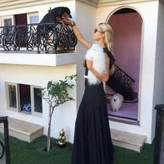 Peek Inside Paris Hilton's Dogs' Insane Mansion - Hundehütten Paris Hilton Dog, Dog Mansion, Luxury Dog House, Celebrity Dogs, Cool Dog Houses, Dog Rooms, Spanish Style, Celebs, Celebrities