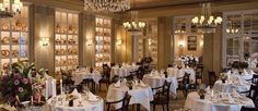 If you are going to Frankfurt soon, perhaps to Light + Building, you certainly need a place to stay! Here are the some of the best luxury hotels in Frankfurt. Frankfurt Restaurants, Top 10 Restaurants, Fine Hotels, Best Hotels, Luxury Hotels, Hotel Website, Light Building, Luxury Life, Luxury Travel