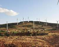 The economic case for wind and solar energy in Africa