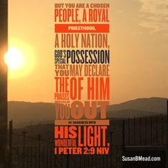 But you are a chosen people, a royal priesthood, a holy nation, God's special possession, that you may declare the praises of him who called you out of darkness into his wonderful light. 1 Peter 2:9 NIV #chosen #holy #God #light