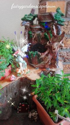 My Fairy Garden, Fairy Gardens, Cape Town South Africa, Tree Stump, Reception Areas, Faeries, Recycling, The Secret, Beautiful