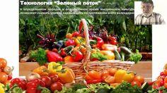 Технология в Солнечном био-вегетарии
