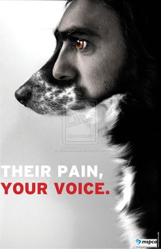 Animal Rights Poster 1 by ShaunaLeavitt on deviantART -  These photos are intended to create awareness of animal abuse and how people need to report it. You are their voice, report animal abuse when you see, hear it, etc.