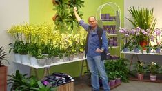 A Visual Guide To Garden Retail Merchandising