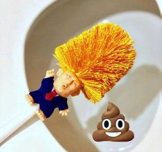 Make your toilet great again with the Donald Trump Toilet Brush, if he can do it for America he can do it for your toilet bowl. Buy Toilet, Toilet Brush, Toilet Cleaning, Bathroom Cleaning, Gag Gifts, Funny Gifts, Best Brushes, Pet Furniture, Toilet Bowl