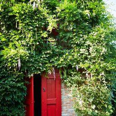 A doorway in Oberto Gili's garden