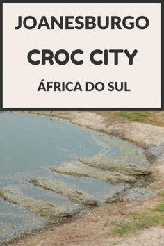 Croc City - Joanesburgo, África do Sul - Juny Pelo Mundo  Dica de viagem para o seu roteiro Joanesburgo, Pretória, Safari