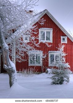 Snowy cottage in Småland (Sweden)