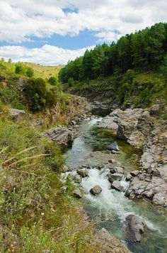 Nature Pictures, The Incredibles, Earth, River, World, Green, Outdoor, The World, Argentina
