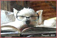 Poesia romanesca - Il pensiero delle bestie Poveri illusi! Dar giorno der peccato origginale ner monno se pratica male er bene e bene er male. Parecchio e tanto tempo fa' scrisse su de noi prima Esopo, e su quella scia Fedro, La Fontaine e Tri #divertimentigrafici #favole #animale