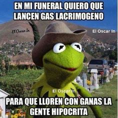 ¡Pa' que chillen! Funeral, Frog Quotes, Spanish Humor, Grinch, Funny Memes, Lol, Funny Things, Funny Stuff, Anne Hathaway