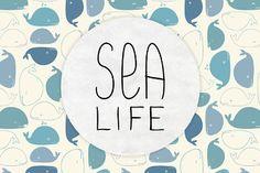 Sea Cuties Jun 3, 2013