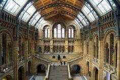 Natural History Museum - Přírodovědecké muzeum najdete zde napč. simulátor zemětřesení nebo simulátor mimina v děloze.    Zajímavé informace o muzeích v Londýně najdete zde: http://info.radynacestu.cz/muzea-v-londyne/