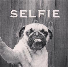 But first let me take a selfie
