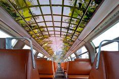 """RER C / Château de Versailles - """"À l'intérieur des rames, l'effet trompe-l'oeil joue à plein pour le plus grand enchantement des voyageurs."""" (Le Figaro)"""