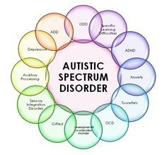 """Autism Spectrum Disorders include a range of group of developmental brain disorders. """"Spectrum"""" refers to the wide rangen of symptoms, skills, and levels of impairmet, or disability, that children with ASD can have."""