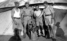 "Polish soldiers of the 22nd Artillery Supply Company, II Corps pose with their mascot, Wojtek, a Syrian brown bear and possibly one of the best recognized mascots of the war era. In 1942, a local boy found a bear cub near Hamadan, Iran whose mother had been shot. He sold the cub to Irena ""Inka"" Bokiewicz, a young Polish refugee walking across the Elbruz mountains as she escaped from the Soviet Union with the Polish Anders' Army. When he became too big to care for, she gave him to the Polish…"