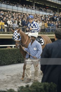 Ron Turcotte aboard Secretariat being led by groom Edward Sweat before race at Aqueduct Racetrack. Jamaica, NY Get premium, high resolution news photos at Getty Images Beautiful Horses, Animals Beautiful, The Great Race, Triple Crown Winners, Sport Of Kings, Thoroughbred Horse, Racehorse, Kentucky Derby, Horse Racing