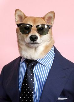Doge In Suit #summer