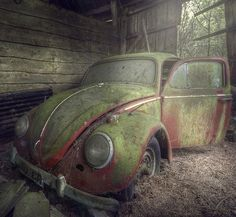 An old Volkswagen Beetle found in an abandoned barn. That's one dead bug!