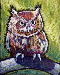 """Screech"" - Original Fine Art for Sale - © Ande Hall Oil Pastel Paintings, Oil Pastel Art, Oil Pastel Drawings, Owl Art, Bird Art, Chalk Pastels, Oil Pastels, School Art Projects, Wildlife Art"
