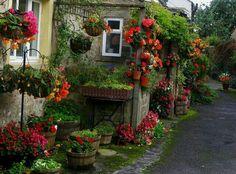 Mutluluk Yuvası Cennet evler