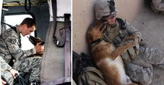 We have had dogs as our loyal companion and fellow soldier in combat for more than 15,000 years, reported by Military History Now. They're loyalty and unconditional love have saved countless lives throughout this time. A message from our sponsors We have compiled 16 powerful photos of service dogs and their faithfulness. Prepare for your …