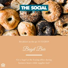 Get over that midweek slump and grab a quick breakfast on us on November Bagels available while supplies last. Bagel Bar, Student Apartment, Leasing Office, Good Student, Breakfast On The Go, Fort Collins, Bagels, November, November Born