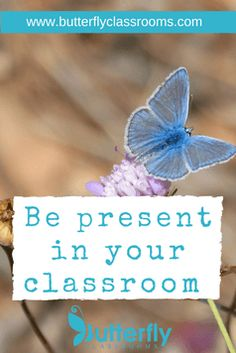 Make a deal with your learners, for the next 45 minutes nothing is more important to either of you than what is happening right here in the class. Free Teaching Resources, Learning Activities, Technology Integration, Best Blogs, Educational Technology, Butterfly, Classroom, Teacher, Professor