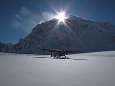 Fresh powder and a crystal carpet  #Talkeetna #Alaska