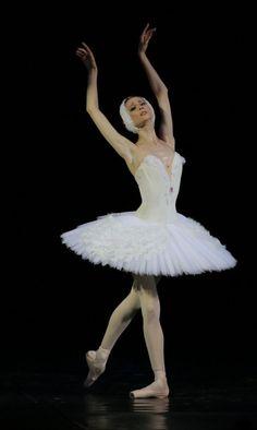 Svetlana Zakharova in The Dying Swan  Photo: Luigi Gasparroni