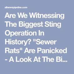 "Are We Witnessing The Biggest Sting Operation In History? ""Sewer Rats"" Are Panicked - A Look At The Bigger Picture Shows Just How Fast The Dominoes Are Falling"