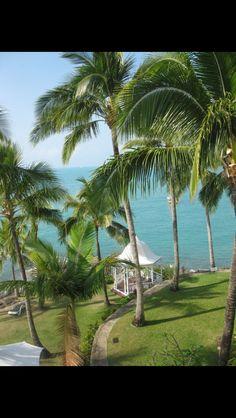 Coral sea resort 2011 airlie beach